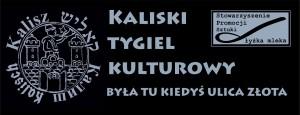 tygiel_logo